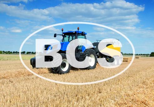 Diseño de la página Web de BCS